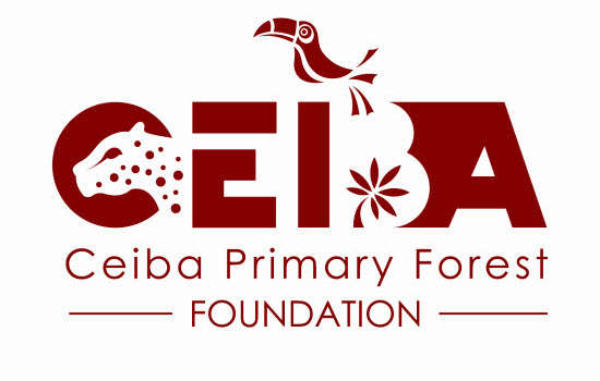 The Ceiba Primary Forest Foundation