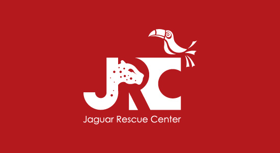 Jaguar Rescue Center